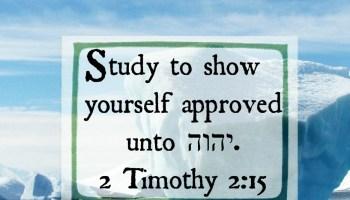 My Bible Study Notebook PDF - Torah Family Living