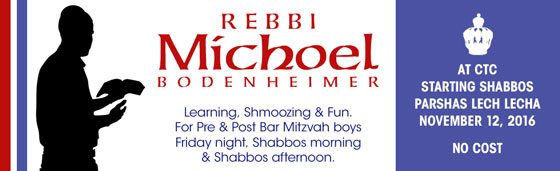 rebbi_michoel2