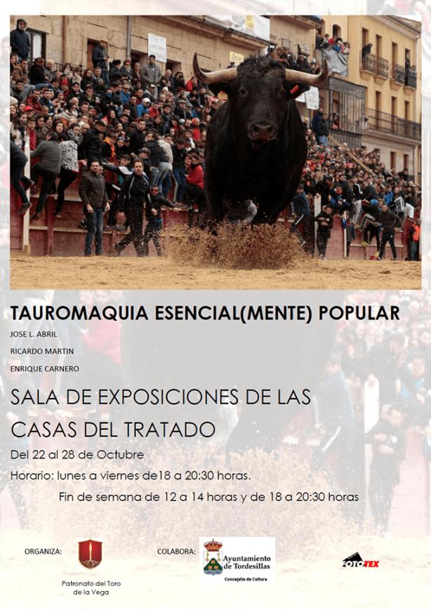 CARTEL Tordesillas - copia