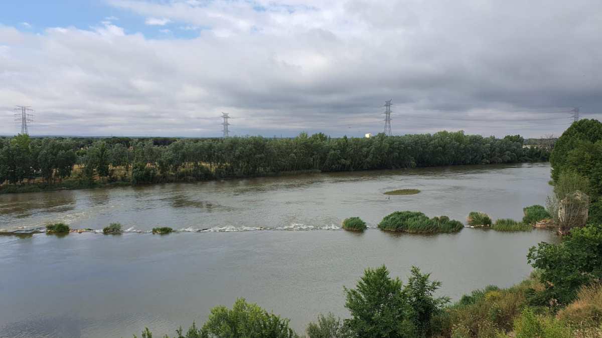 El Ayuntamiento de Tordesillas acordona las zonas cercanas al Duero hasta que se localice al cocodrilo