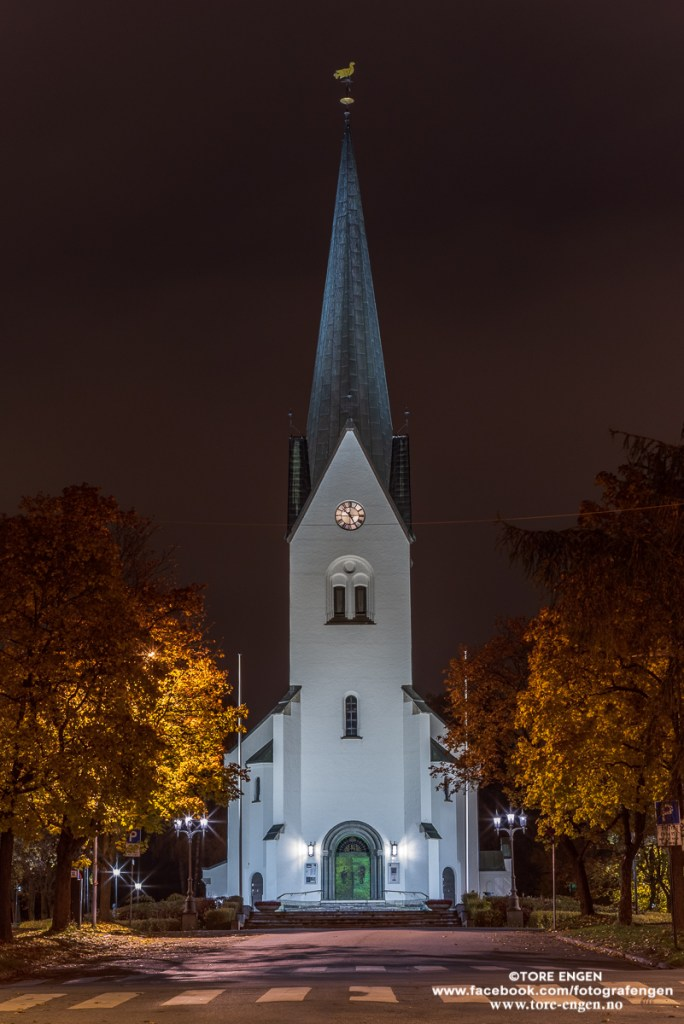 Hamar Domkirke by night