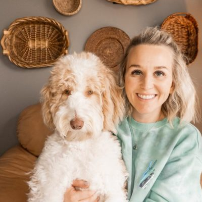 5 Things I WISH I would have known BEFORE getting an Aussiedoodle