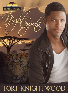 Night Spots, Hotel Safari 2