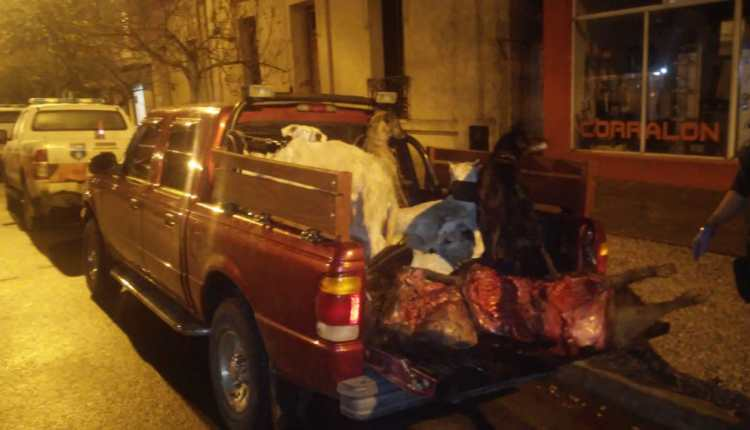 Villa Ventana – Parte de prensa por infracción de caza