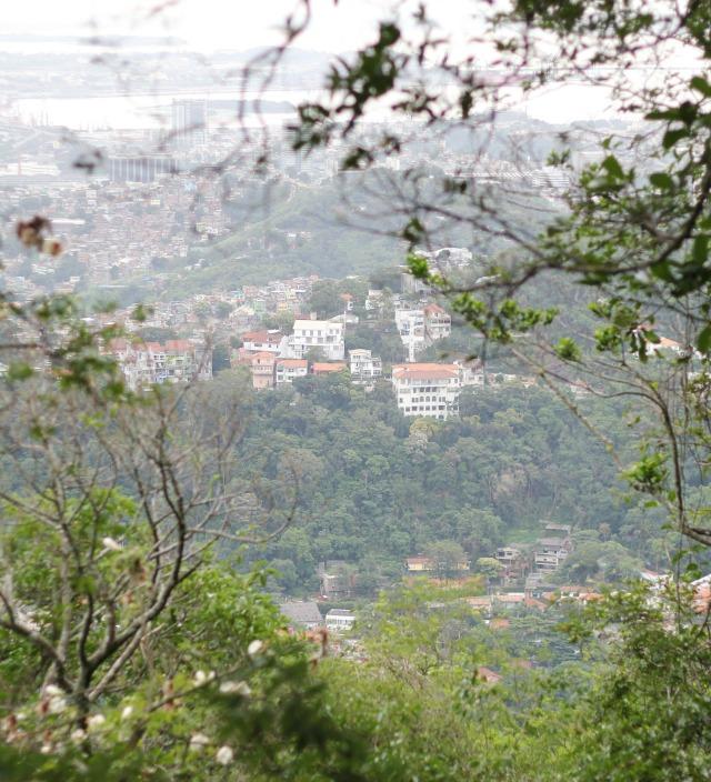 day tour of rio de janerio, day tour with vincente rio