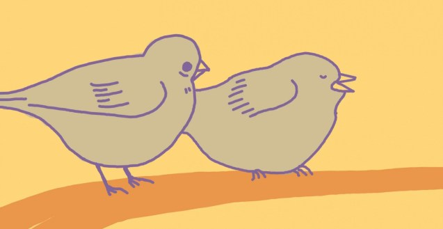 An image of two animated birds sitting on a branch, against a yellow background.