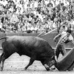 Diego Valor, el pequeño gigante