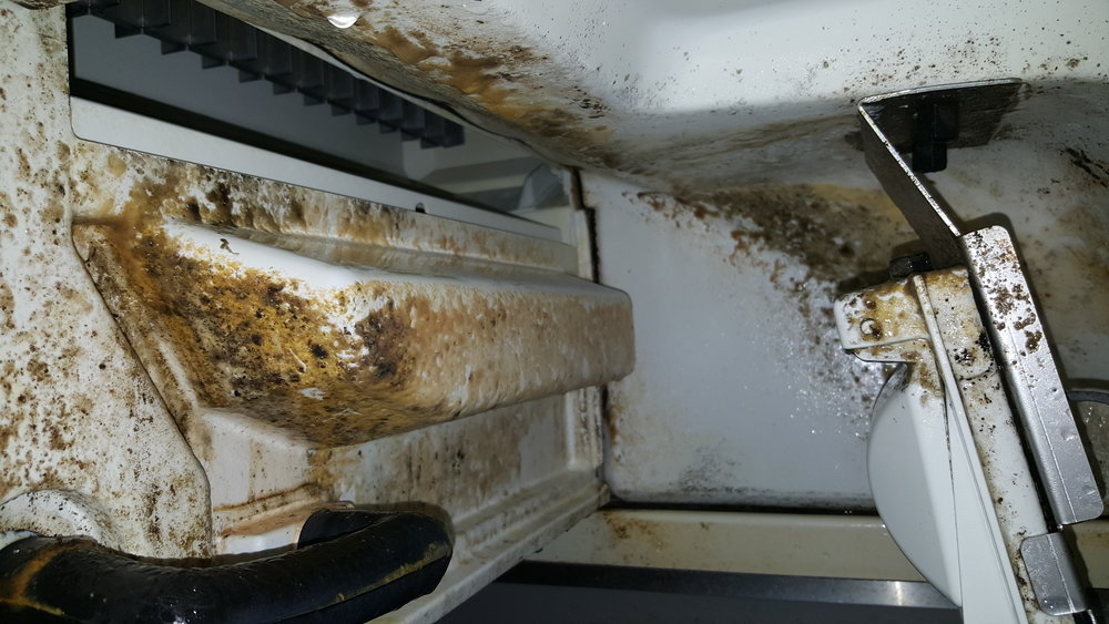Bacteria growing on the inside of a dirty ice machine