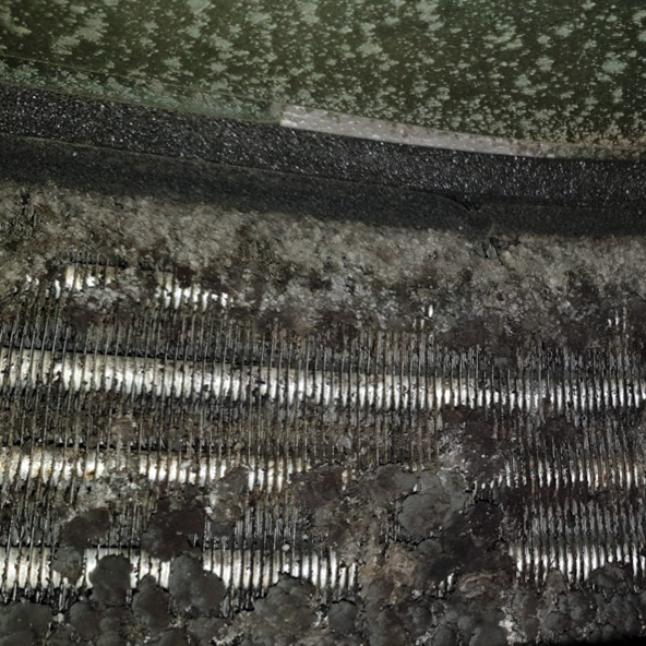 Bacterial growth found on an air conditioning cassette coil during a maintenance visit