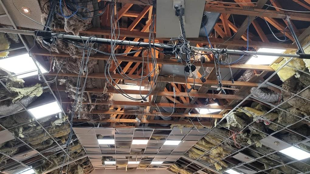 Wilton Fields ceiling