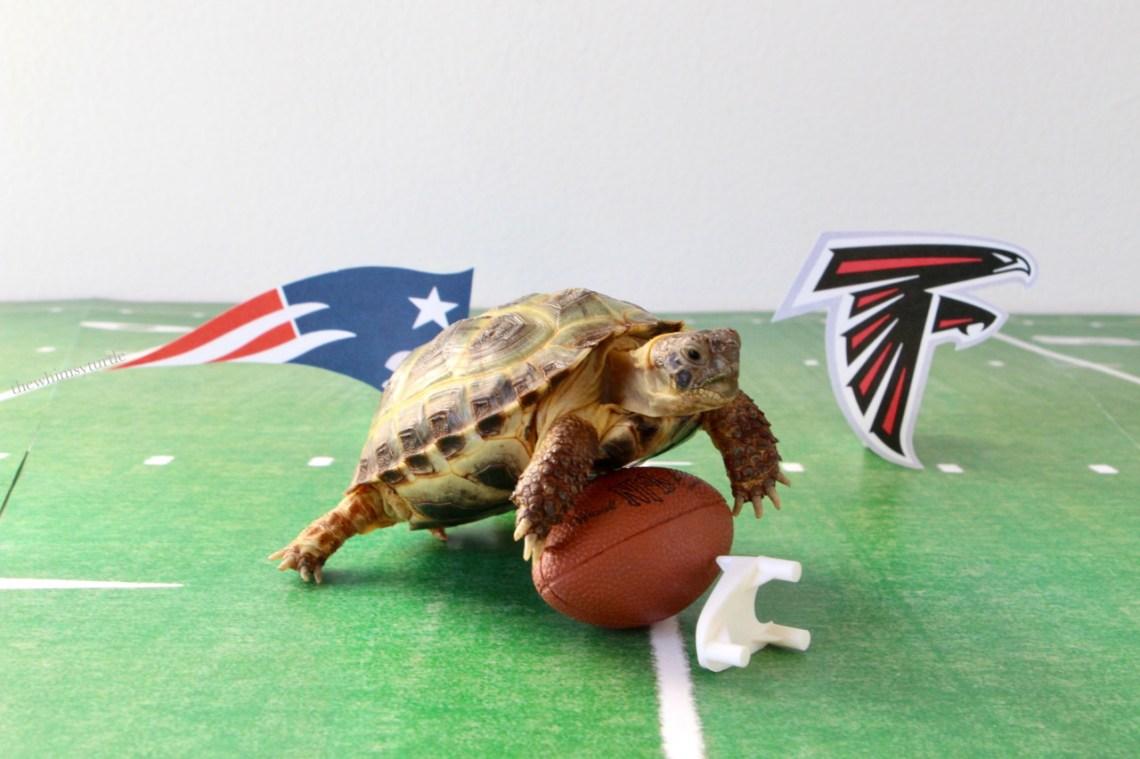 I captured the ball!