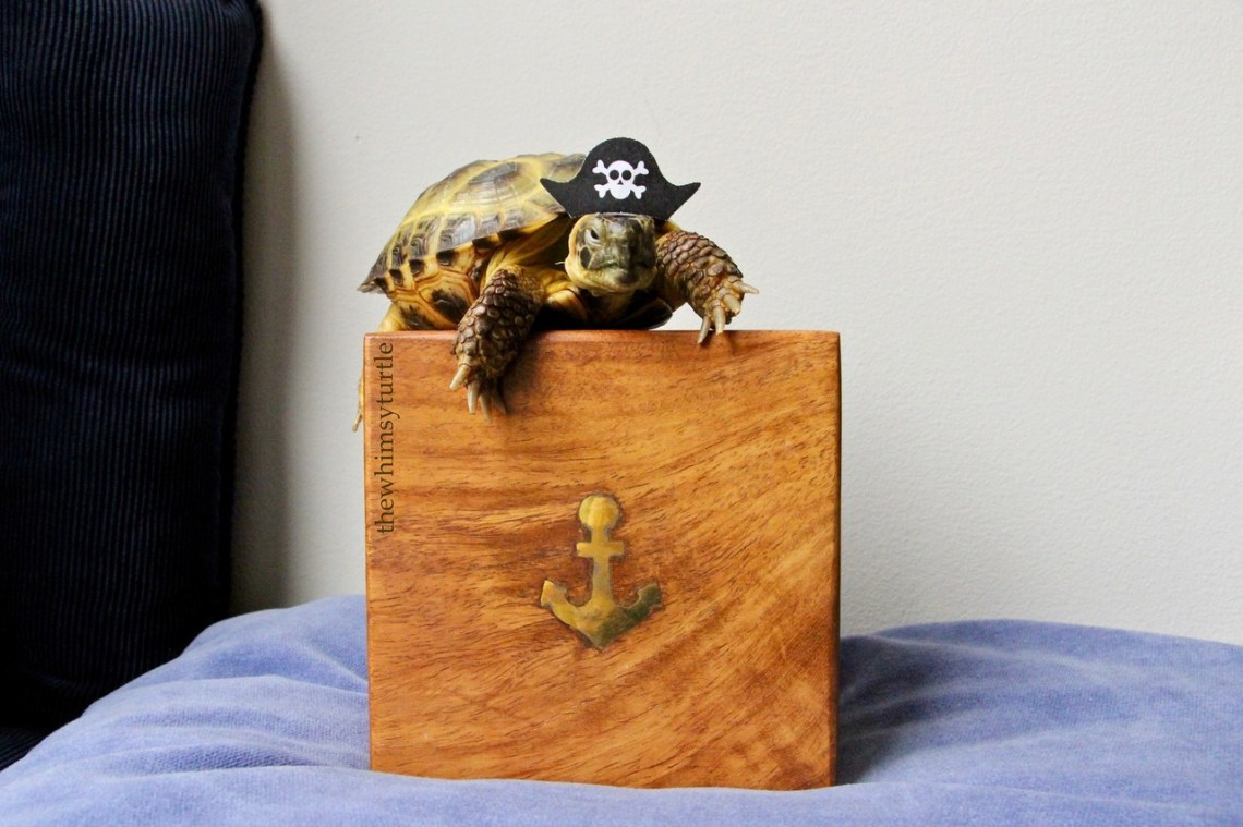 I, th' mighty Cap'n Kirby, be plunderin' this here treasure!