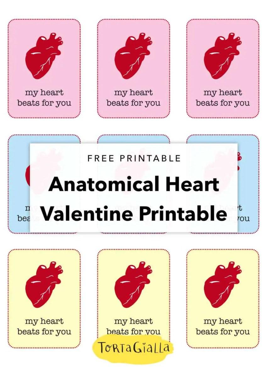 free printable Anatomical heart valentine