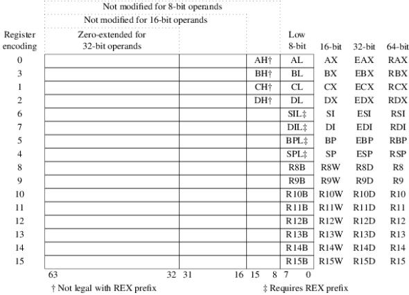 x86 General Purpose Registers