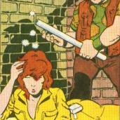 TMNT Aventures Mini-Series #1 2 April O'Neil Rocksteady Archie Comics Tortues Ninja Turtles TMNT