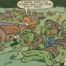 TMNT Meet Archie Comics 2 Tortues Ninja Turtles TMNT