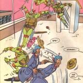 TMNT Adventures #19 Archie Comics 6 Raphael Kid Terra Tortues Ninja Turtles TMNT