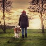 L'importanza della passeggiata per gli amici a 4 zampe