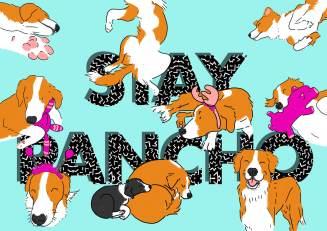 stay-pancho-illustrazione-tostoini-web