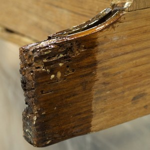 TotalBoat Penetrating Epoxy on wood