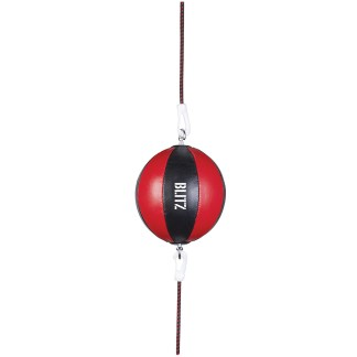 Leather Floor To Ceiling Speedball