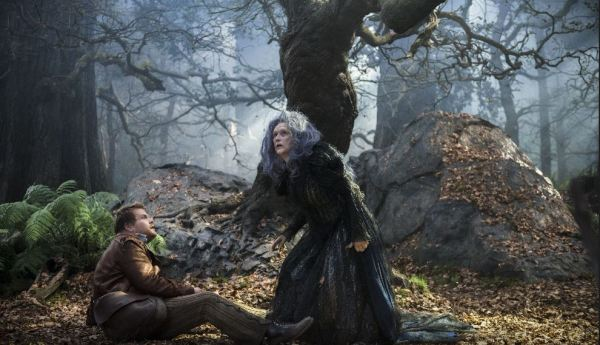 Čarovný les (foto: Falcon)