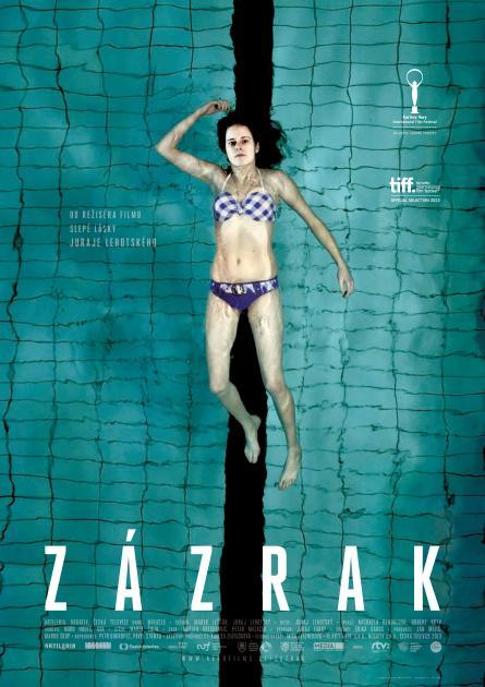 Zarakplakat-page-001