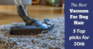 Best vacuum for dog hair written beside a hoover head cleaning a deep rug