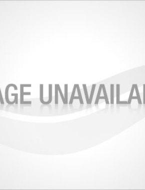 The Family Handyman Magazine – $7 99 Per Year