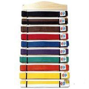 10 level karate belt display