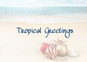 Tropical Card  Back