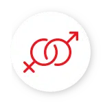 Sexual Intercourse Icon