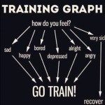 Simple guide if you should GO TRAIN!