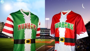 Image result for minor league baseball promotions