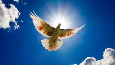 Photo of Călăuzirea Duhului Sfânt în viaţa credinciosului
