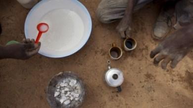 Photo of Ajutoare de urgenţă pentru criza din Sahel