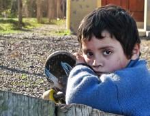 18889-0-copiii_imigrantilor_se_simt_singuri (1)