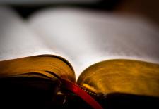 Jurnalul unei Biblii II
