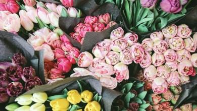 Photo of Florarul creștin câștigă la Curtea Supremă în cazul nunții homosexuale