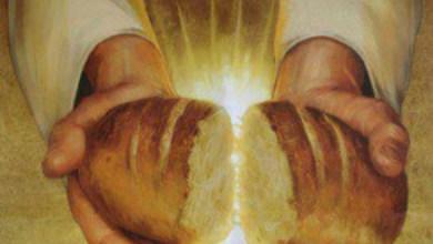 Photo of Alege să fii o pâine caldă!