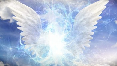 Photo of Cântări îngerești