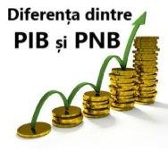PIB PNB