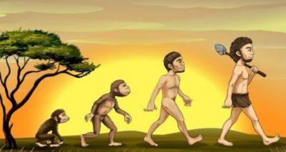 evolutia omului sau a speciei umane