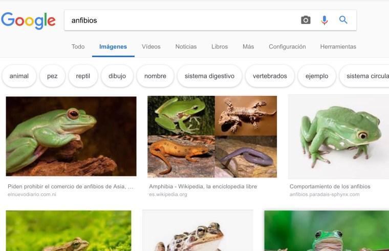 buscar-imagen-google