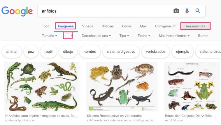 filtrar-color-google-imagenes-poster
