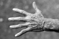 hand with wrinkle