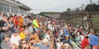 July 3 Homstretch Crowd shot
