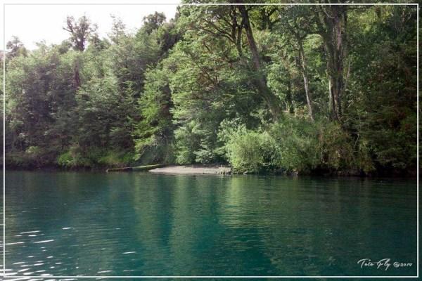Apertura Lago Rupanco 2014-2015-23