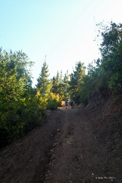 Sierras de Bellavista_15
