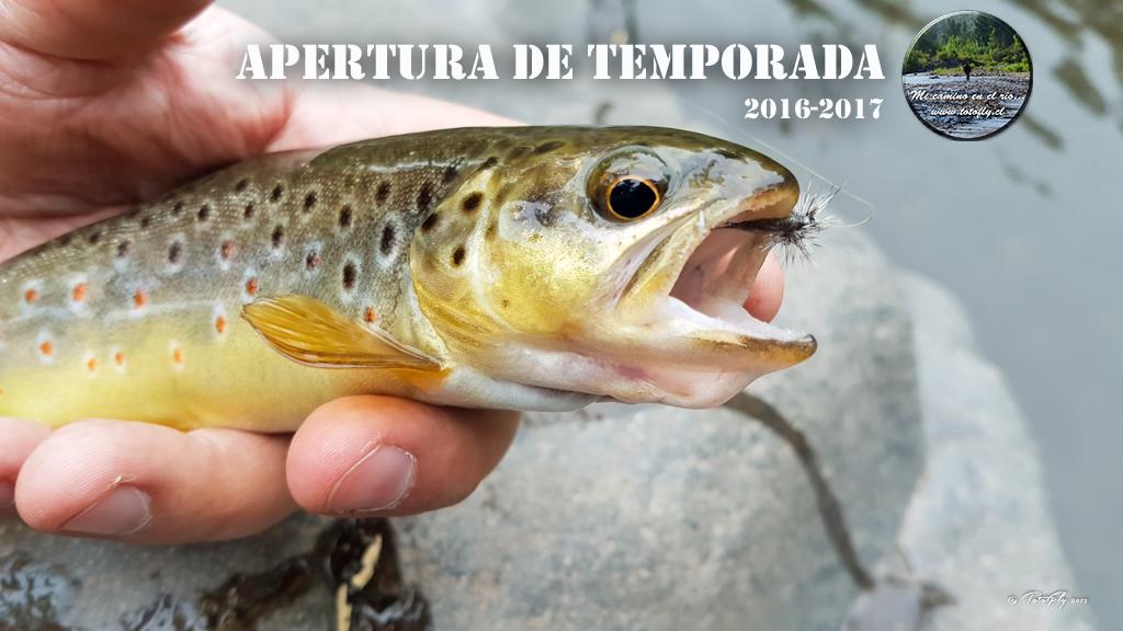 Apertura de temporada 2016-2017